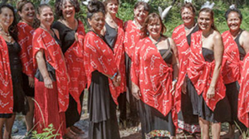 Maori healers
