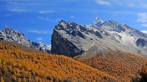 Gazi Tibet SNS (2)