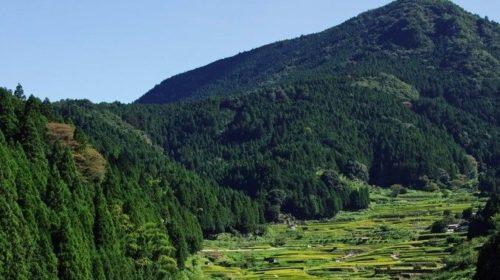 Aichi landscape (2)