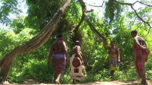 Benin_pretresses-de-la-foret-sacre