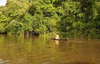 Parc National Naturel Yaigojé Apaporis