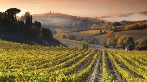 Toscana-paisatge