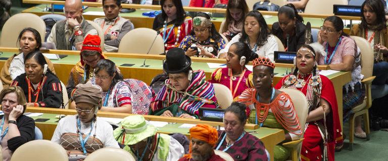 Participants a la cerimònia inaugural del Fòrum sobre temes Indígenes, ONU. Foto Rick Bajornas