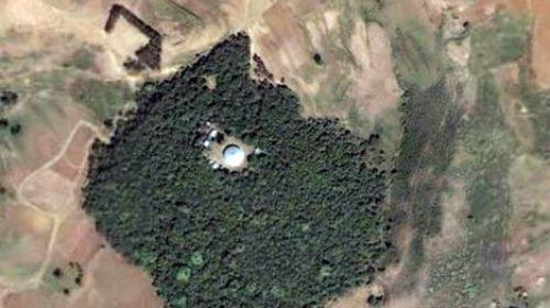 ethiopia-church-forest