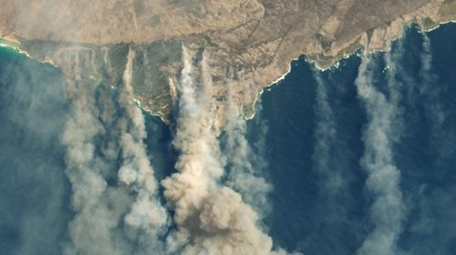 Focs-Australia