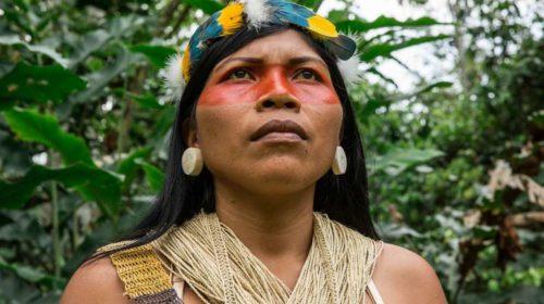 amazon_frontlines-ecuador-nemonte_nenquimo_portrait-01_opt