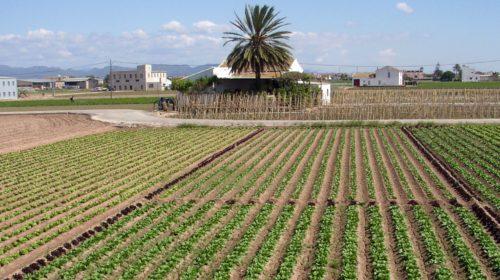 horta València